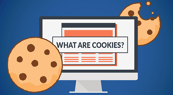 Read more about the article What Are Cookies?