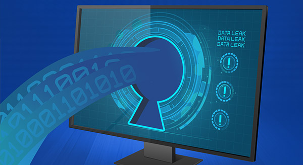 Read more about the article What To Do If Your Data Is Included In A Data Leak